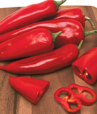 Pepper, Hot, Tastemaker Hybrid, , large