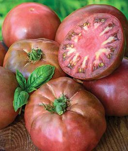 Tomato, Black Krim Heirloom Organic, , large