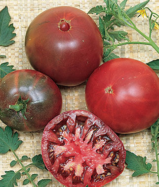 Grafted Tomato, Black Krim Heirloom, , large