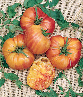 Tomato, Mr. Stripey 1 Pkt. (30 seeds), Tomatoes, Tomato Seeds, Beefsteak Tomatoes, Slicing Tomatoes, Tomato Starts, Tomato Plants