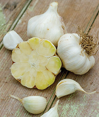 Garlic, Transylvania, , large