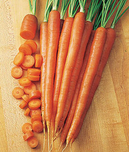 Carrot, Burpee A#1 Hybrid, , large