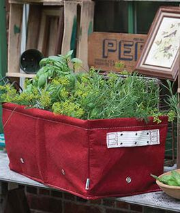 Raised Bed Planter, , large