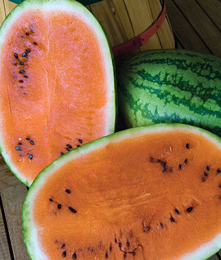 Watermelon, Orange Tendersweet, , large