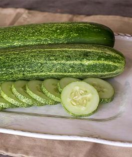 Cucumber, Chompers Hybrid, , large