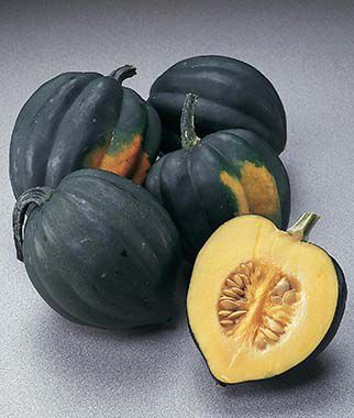 Burpee 39 s bush table queen winter squash seeds and plants for Table queen squash