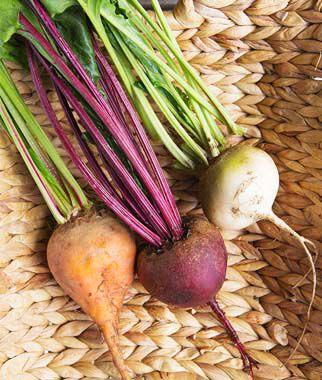 Beet, Three Color Blend 1 Pkt. (200 seeds), Beet Seeds, Beets, Beet Seed, Seeds, Garden Seeds, Vegetable Seeds, Garden Supplies