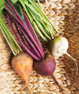 Beet, Three Color Blend, , large