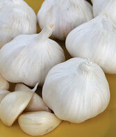 Garlic, Nootka Rose, , large