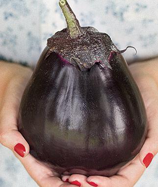 Eggplant, Meatball Hybrid 1 Pkt. (30 seeds), Eggplant Seeds, Eggplant Seed, Eggplant Plants, Eggplant Starts, Eggplant, Garden Seeds, Garden
