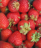 Strawberry, Sweet Charlie, , large