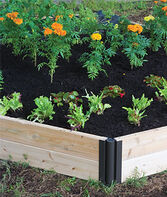 Double Level Complete Cedar Raised Bed, , large