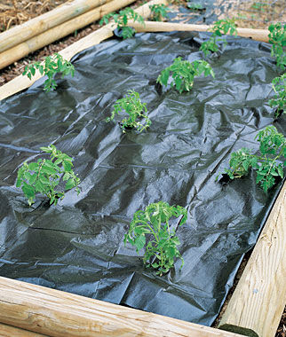 Weed Control Film, , large