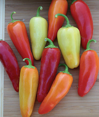 Pepper, Hot, Santa Fe Grande, , large