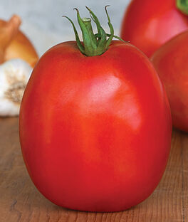 Tomato, SuperSauce Hybrid, , large