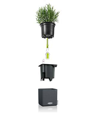 All In-One Cube Planter, , large