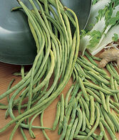 Bean, Asparagus Yardlong, , large