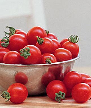 Tomato, Ladybug Hybrid 3 Plants, Cherry Tomato Seeds, Currant Tomato Seeds, Grape Tomato Seeds, Cherry Tomato, Tomato Seeds