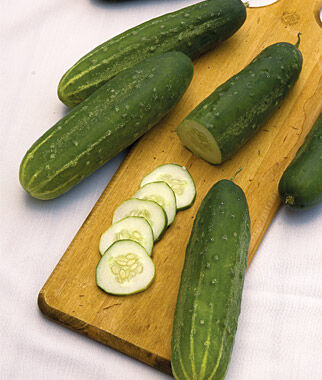 Cucumber, Straight Eight, , large