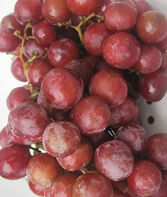 Grape, Somerset Seedless, , large