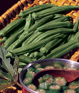 Okra, Clemson Spineless Organic, , large