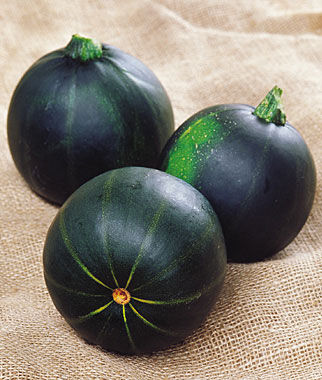 Squash, Summer, Eight Ball Zucchini, , large