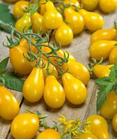 Tomato, Yellow Pear, , large