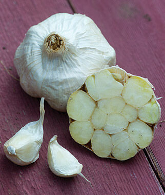 Garlic, Italian Loiacono , , large