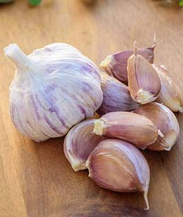 Garlic, Montana Giant, , large