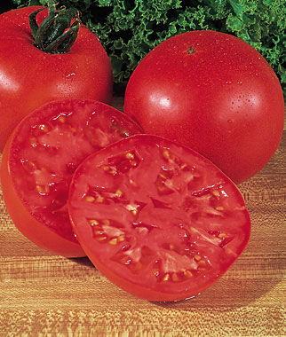 Tomato, Burpee's Big Boy  Hybrid, , large