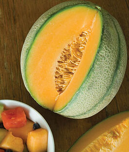 Cantaloupe, Sweet 'N Early Hybrid, , large