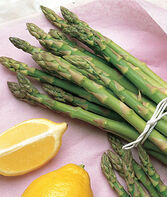 Asparagus, Mary Washington, , large