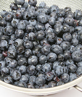 Blueberry, Northland, , large