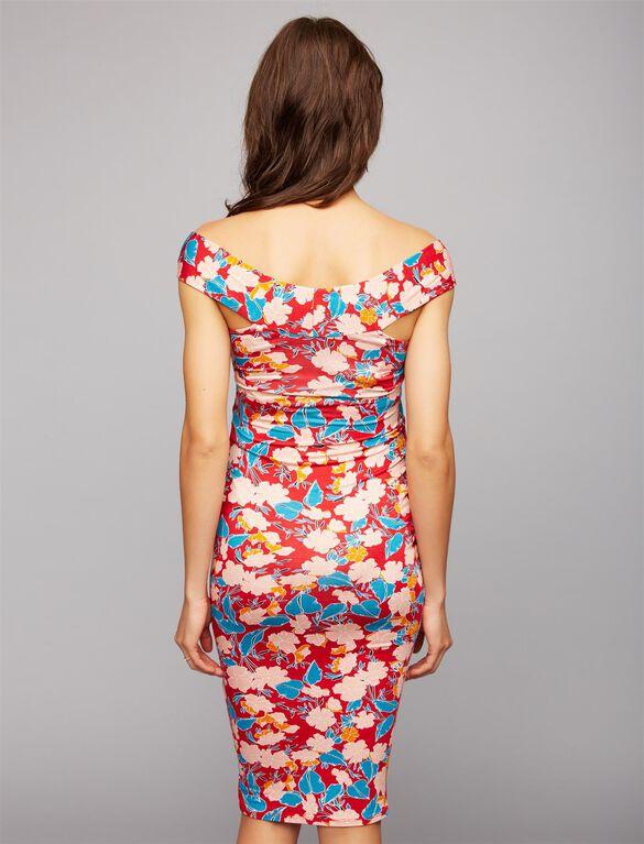 Rachel Pally Sammie Maternity Dress, Print