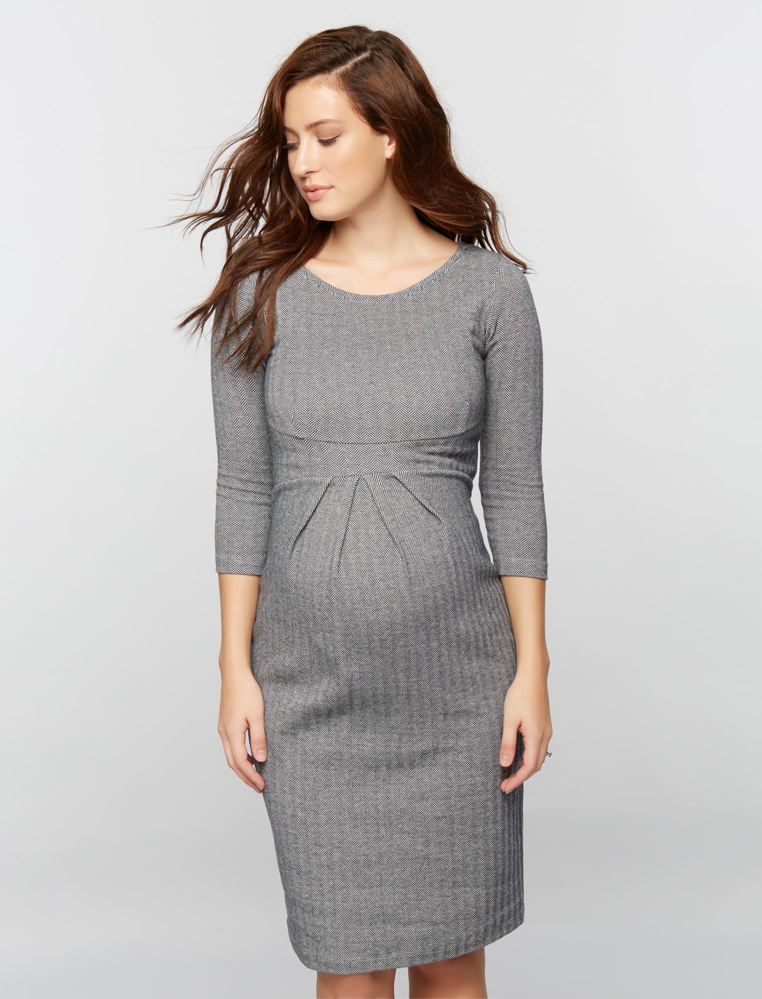 Isabella Oliver Shirring Detail Maternity Dress