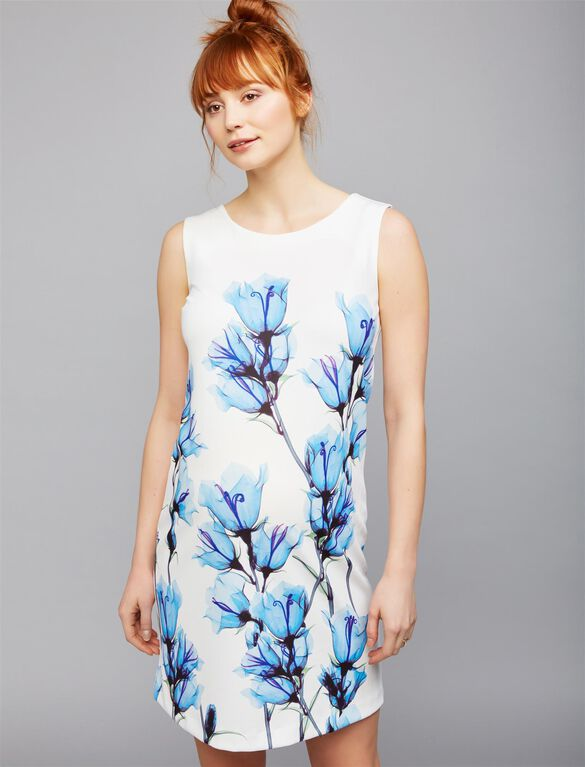 Pietro Brunelli Floral Sheath Maternity Dress, White