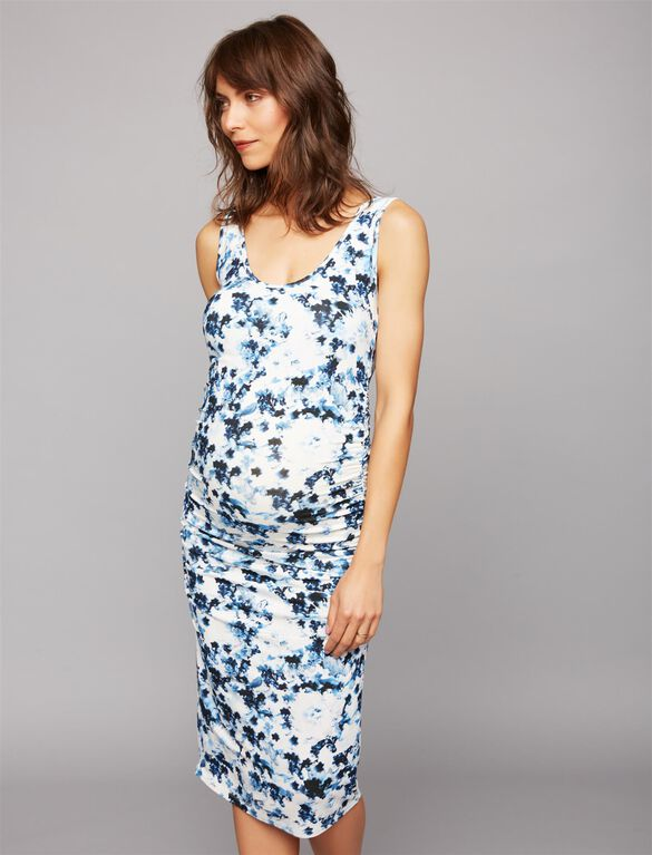 Isabella Oliver Anaise Maternity Dress, Blue Print