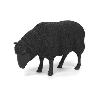 BLACK SHEEP, , hi-res