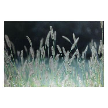 GRASSY FIELD WALL ART, , hi-res