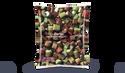 Rhubarbe en morceaux, importation