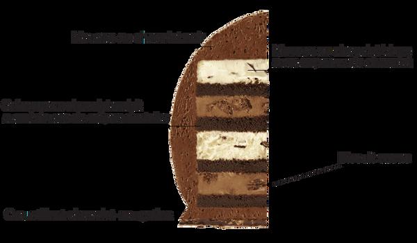 Oeuf pâtissier aux trois chocolats