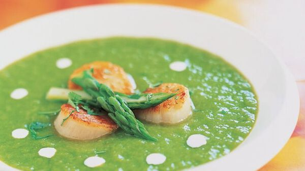 Recette soupe froide d 39 asperges aux petites saint jacques - Cuisiner des st jacques ...