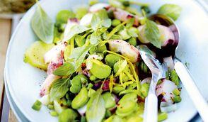 Salade de calmar au basilic, fèves et petites pommes de terre