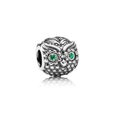 Wise Owl Charm