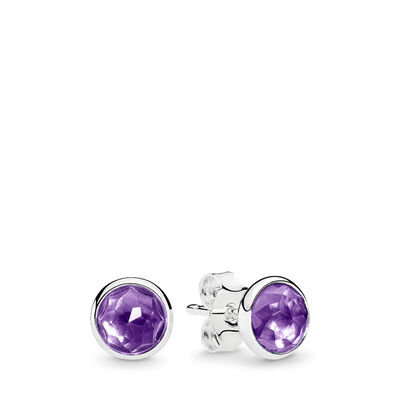 February Droplets Stud Earrings
