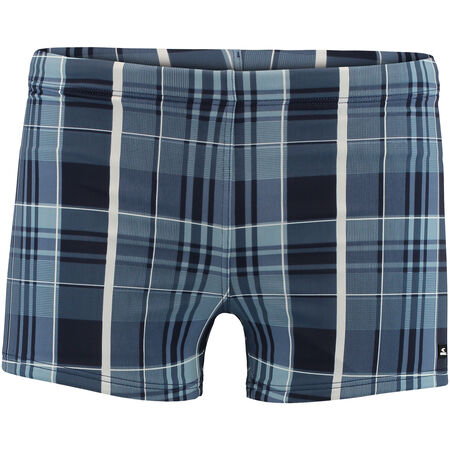 Santa Cruz Check Swimming Trunk