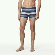 Santa Cruz Stripe Swimming Trunk