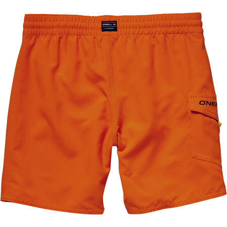 Sunstruck Board Short