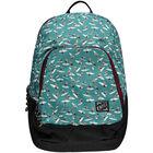 Wedge backpack