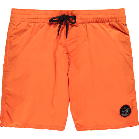 Sunstruck Swimshort